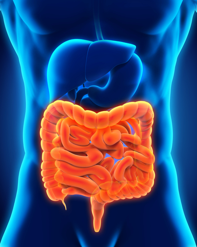 $36M Grant Awarded to Study IBD and Related Conditions in Canada