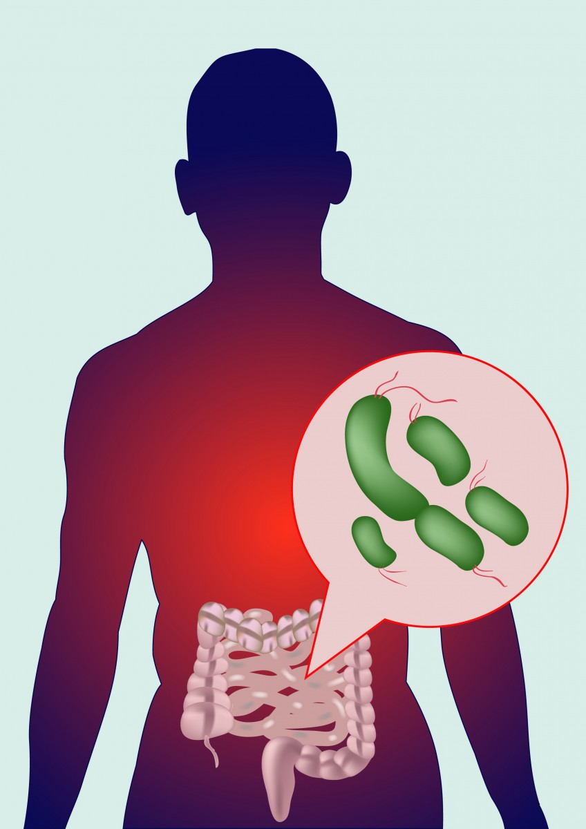 Microbiome Imbalance Can Induce Crohn's Disease-like Inflammation