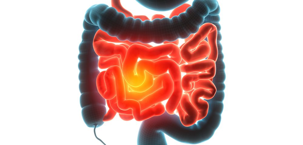 Key Protein May Lead to Novel IBD Therapies for Colon Inflammation, Crohn's, Ulcerative Colitis
