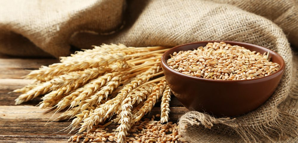 Wheat Protein May Cause or Aggravate IBD, Other Chronic Health Conditions, Study Finds