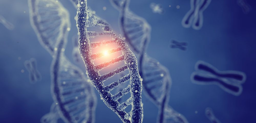 A Single Gene Variant, Once an Evolutionary Edge, Now Seen to Promote Diseases Like IBD