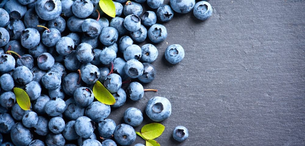 Portuguese Blueberry Shows Potent Anti-Inflammatory Effect in Colitis Animal Model