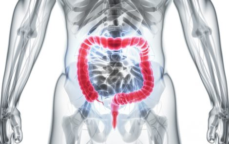 Mitochondrial DNA in IBD Patients A Potential Therapeutic Target, Study Suggests