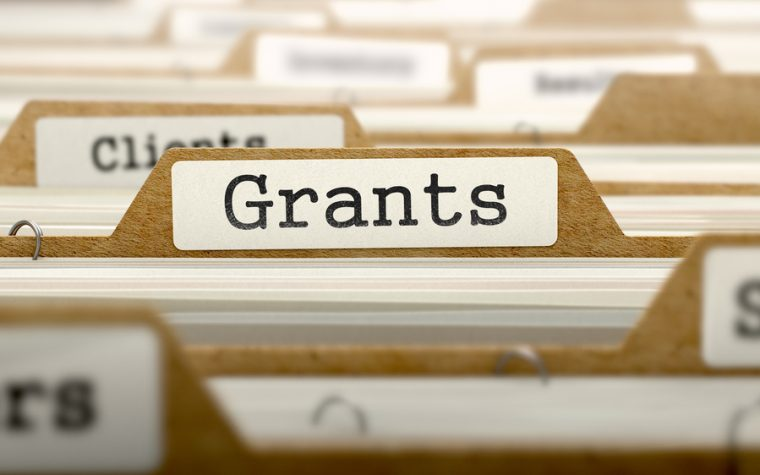 IBD research grants
