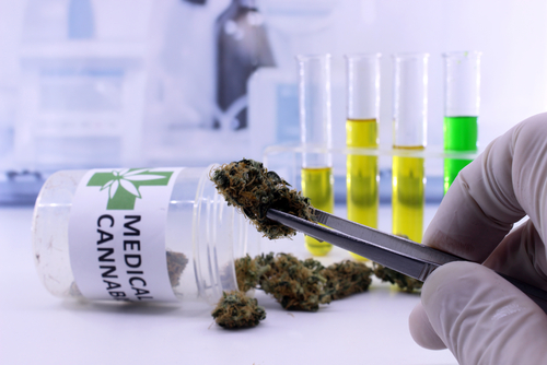 Vitality Biopharma Seeks FDA's Orphan Drug Status for Cannabinoid Therapy VITA-100
