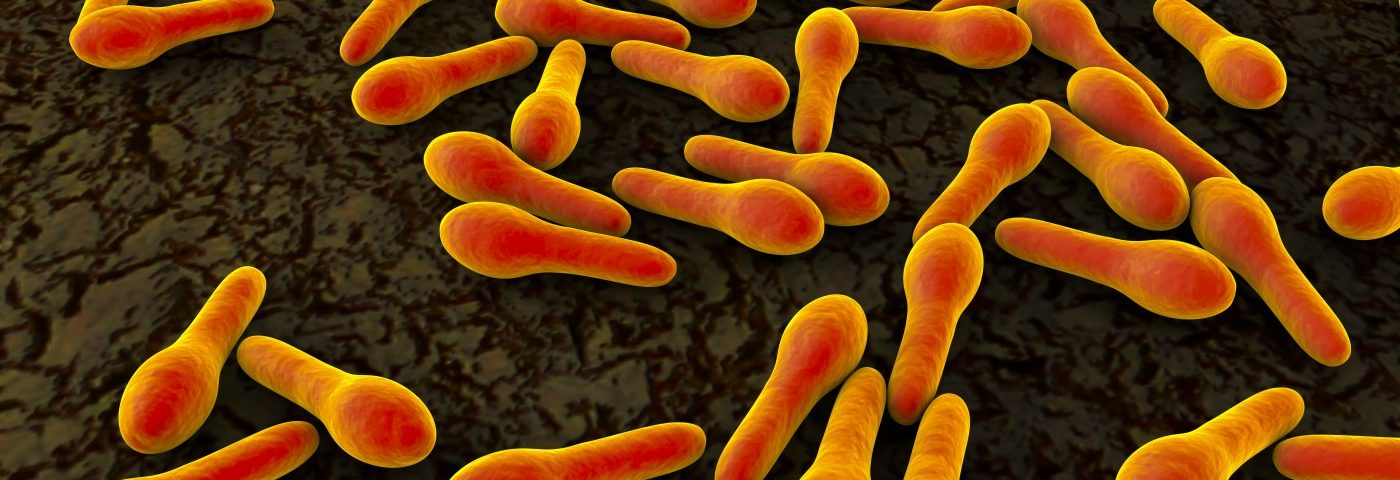 Feeding Infants the Probiotic Bifidobacterium infantis Led to Significantly Lower Intestinal Inflammation, Study Shows