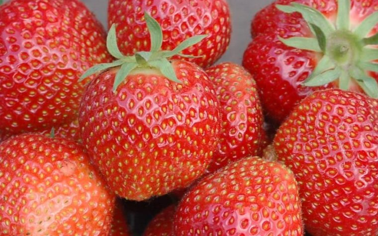 strawberries effects