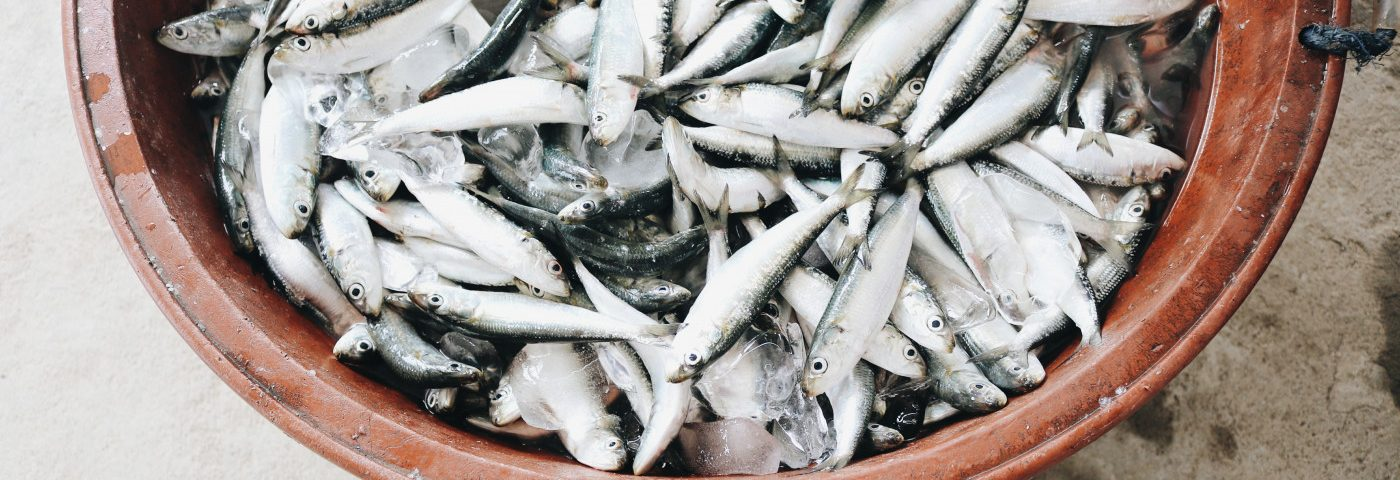 Diet Rich in Fish-derived Fats Might Cut IBD Risk, Review Study Suggests